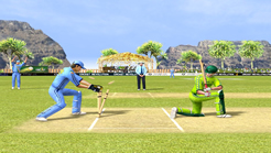 Cricket Revolution Screenshot