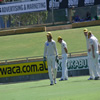 Ryan Campbell, Shaun Marsh, Adam Voges, Chris Rogers