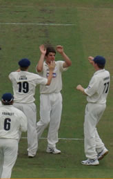 Moises Henriques celebrates a wicket with his team mates