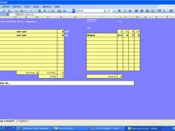 Excel Cricket