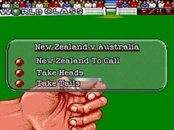 Allan Border Cricket Screenshot
