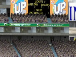 Cricket 2004 Screenshot