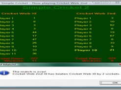 Simple Cricket 2