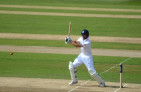 Cook_batting,_2013_(1)