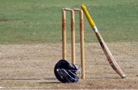 cricketimage