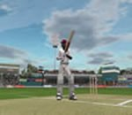 Brian Lara International Cricket 2005 Screenshot