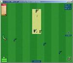 Live Cricket 2008