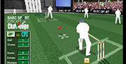 Cricket Craziness