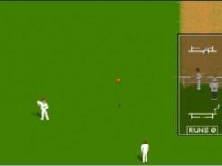 Allan Border Cricket Screenshot