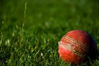 cricketball