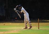 cricket-166904_1920
