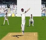 Cricket 3d