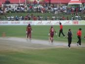 cricket_in_america